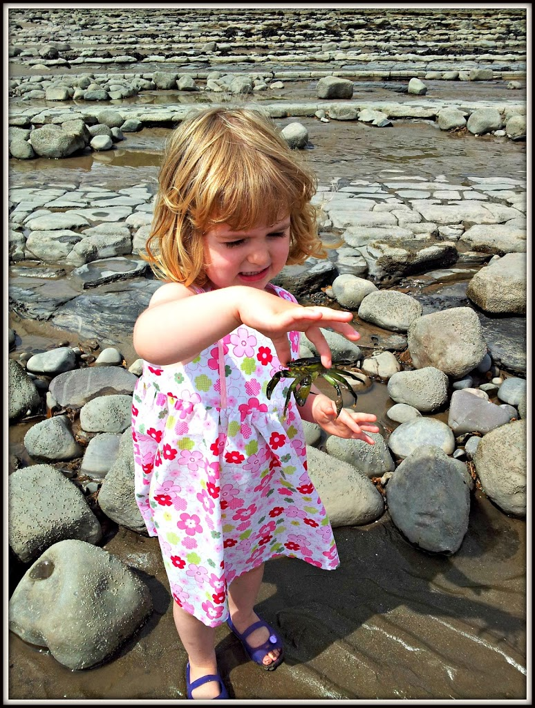 seaside kids days out