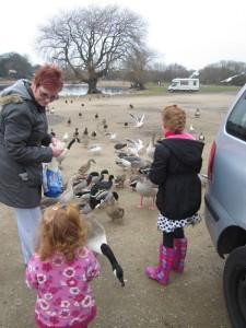 children feeding ducks