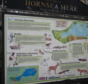 things to do in Hornsea Yorkshire