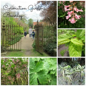 Coronation Gardens Beverley