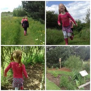 Filey Bird Garden and Animal Park