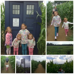 Doctor Who Maze at York Maze