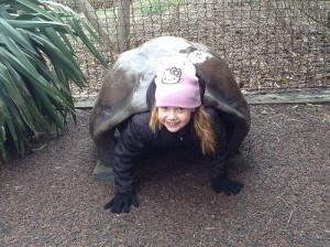 London Zoo human turtle