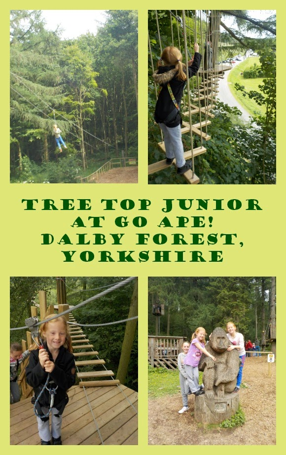 Go Ape at Dalby Forest North Yorkshire