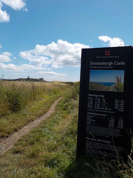 Dunstanburgh Castle from Dunstan Hill campsite