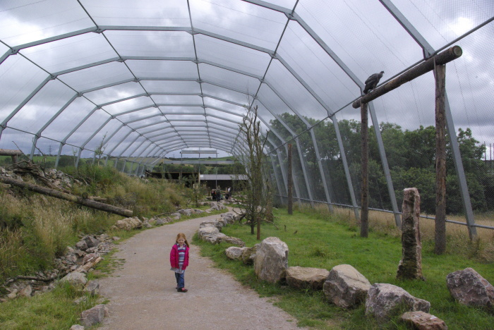 The vulture enclosure at South Lakes Safari Zoo