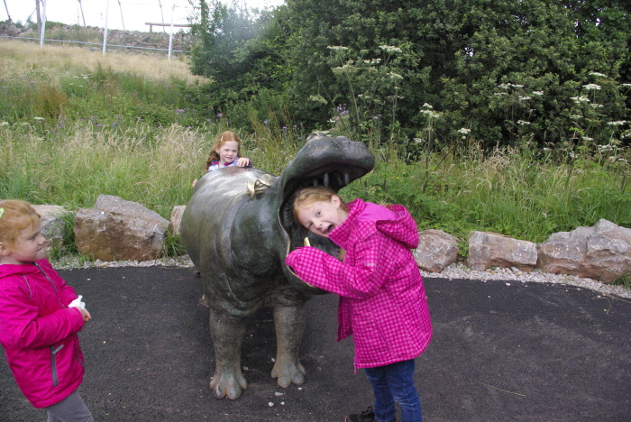 Feeding the hippo at South Lakes Safari Zoo