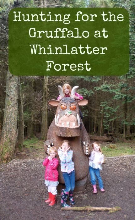 Hunting for the Gruffalo at Whinlatter Forest