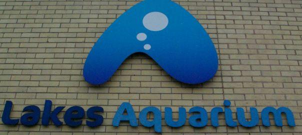 Lakes Aquarium The Lake District