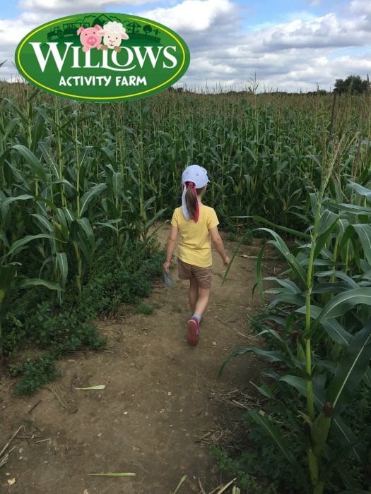 Review - Willows Activity Farm, Hertfordshire