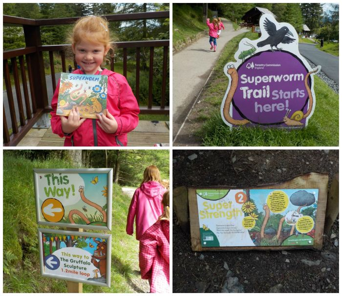 The Superworm trail at Whinlatter Forest