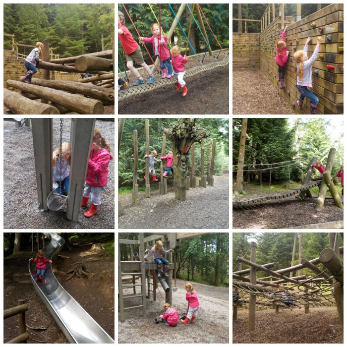 Wild play trail at Whinlatter Forest