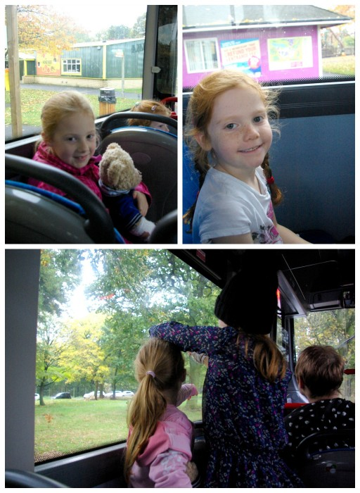 Aboard the Baboon Bus at Knowsley Safari Park
