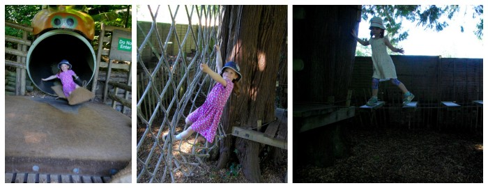 The low ropes and anaconda slide at River Dart Country Park in Devon