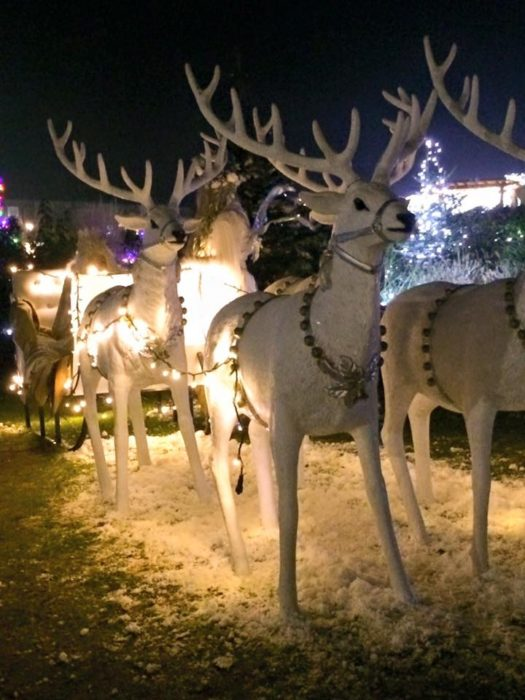 Wynyard Hall Winter Wonderland