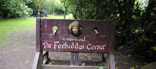 Forbidden Corner review