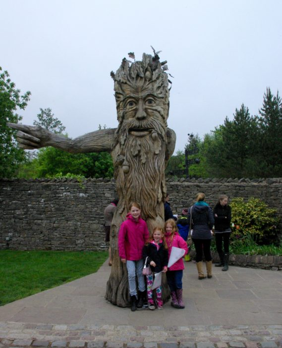 The famous tree at The Forbidden Corner