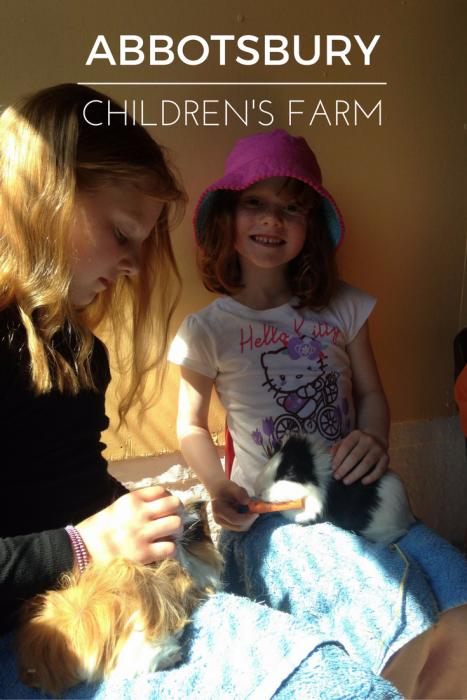 Abbotsbury Children's Farm