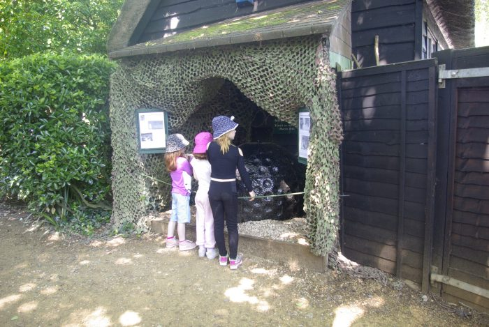 A bouncing bomb at Abbotsbury Swannery
