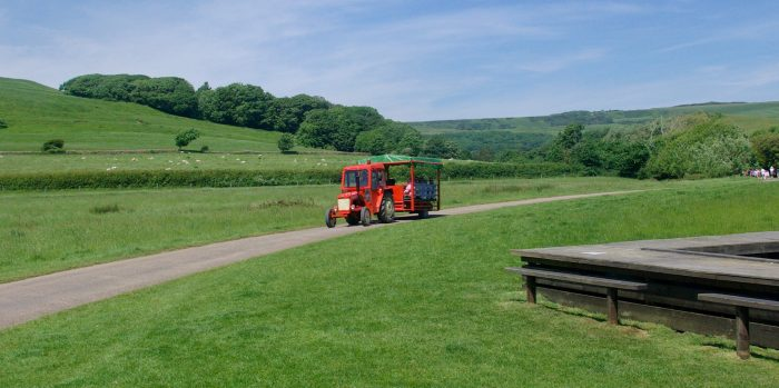 Tractor ride at Abbotsbury Swannery