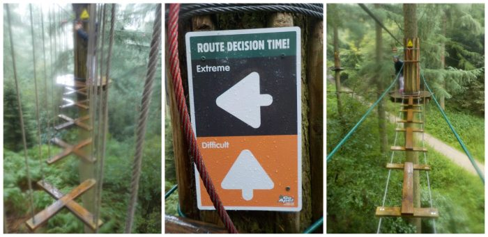 Choosing between the routes at Go Ape Dalby Forest