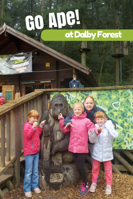 Go Ape at Dalby Forest Review