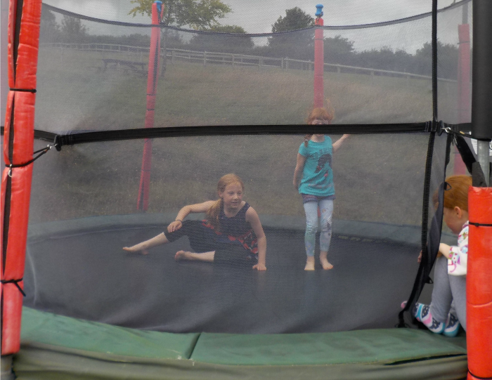 the trampolines at The Miniature Pony Centre