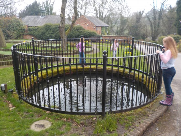 Fish pond at Sandybrook Country Park